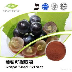 Grape Seed Extract Proanthocyanidins 95% OPC