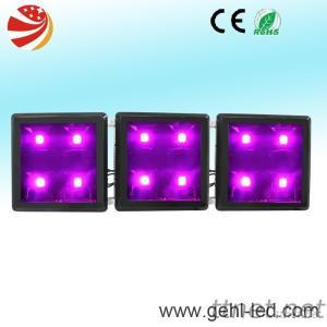 300W LED Grow Light With 90W COB And 5W UV
