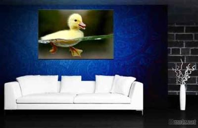 Yellow Duck Photo Prints On Canvas For Sale Online Customized Canvas Prints Best Gift
