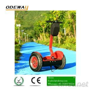 Two Wheel Balance Electric Chariot Scooter Mobility Scooter