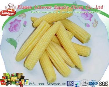 Canned Young Corn