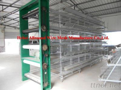 Automatic Poultry Equipment