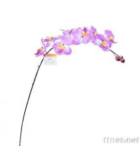 Cheap Sale Butterfly Orchid Flower, Artifcial Orchid, Long Single Stem Flower Craft