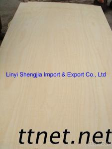 Yellow Plywood For Africa Market