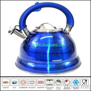 China Induction Kettle Stainless Steel/Water Kettle Of Foshan