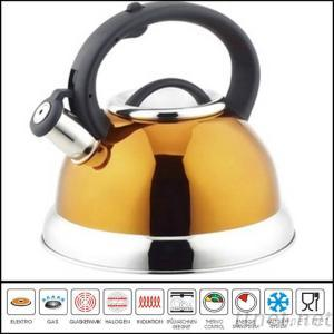 Stainless Steel Whistle Kettle WK528
