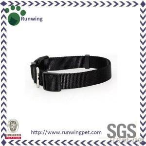 Classic, Durable And Customized Buckle Adjustable Nylon Dog Collar For Training