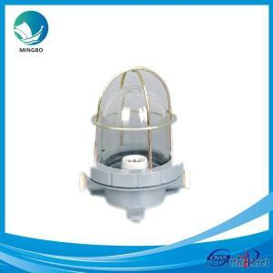 IP55 Plastic Marine Incandescent Pendant Light