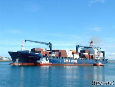 Shipping Freight/ Sea Shipping / Sea Transport