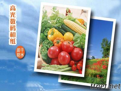 260Gsm Digital RC Glossy Inkjet Photo Paper