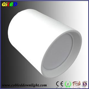 Round 10W 20W 30W Surface Mount Lighting Fixture, IP65 LED Downlight