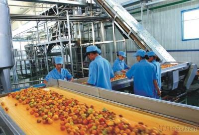 Supply Fruit And Vegetable Juice Processing Machine