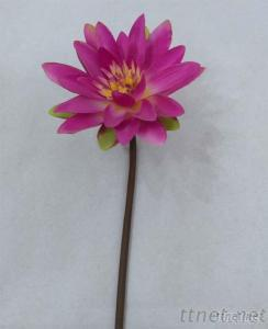 Wholesale High Quality Artificial Water Lily Flowers, Decoration Flowers, Home Decoration