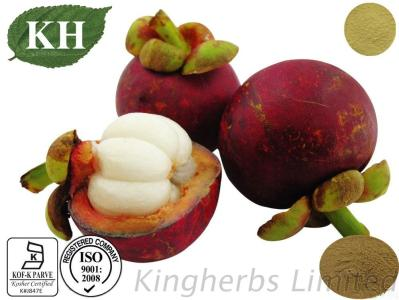 100% Natural Mangosteen Extract With Alpha Mangostin 2%-90%