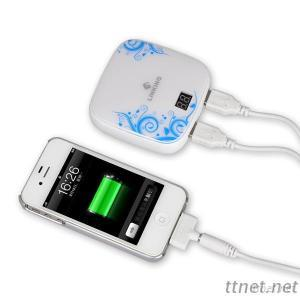 Backup Battery Charger